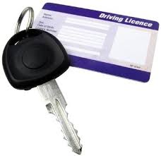 driving licence 1
